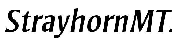 StrayhornMTStd Italic Font