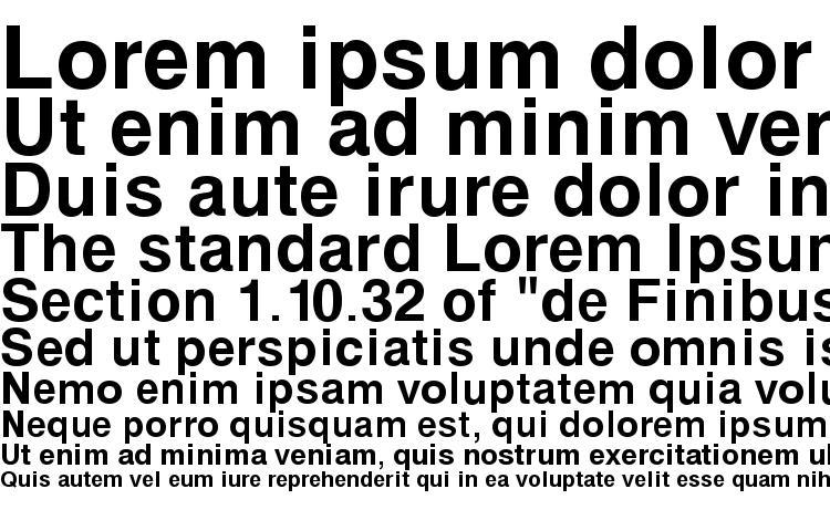 образцы шрифта Svoboda Bold, образец шрифта Svoboda Bold, пример написания шрифта Svoboda Bold, просмотр шрифта Svoboda Bold, предосмотр шрифта Svoboda Bold, шрифт Svoboda Bold