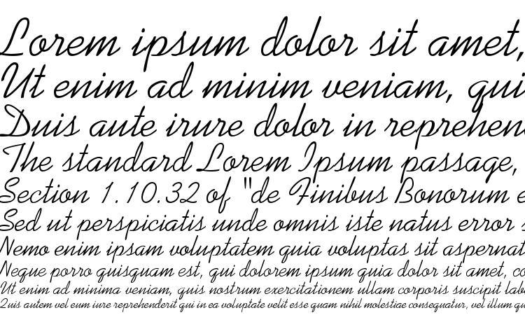 образцы шрифта Swenson, образец шрифта Swenson, пример написания шрифта Swenson, просмотр шрифта Swenson, предосмотр шрифта Swenson, шрифт Swenson