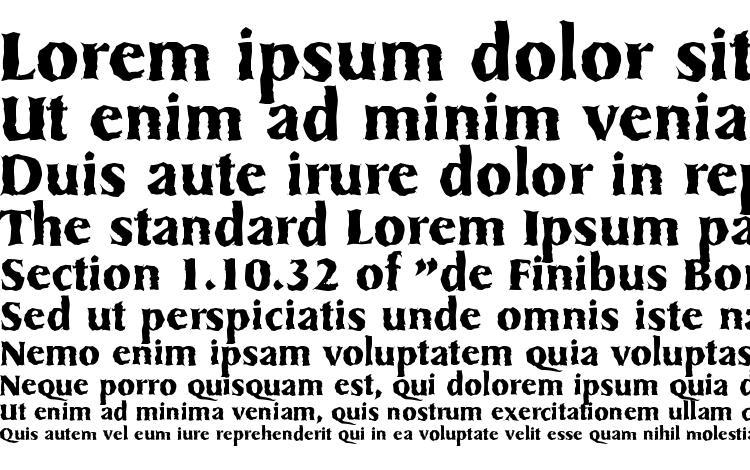 specimens SydneyRandom Bold font, sample SydneyRandom Bold font, an example of writing SydneyRandom Bold font, review SydneyRandom Bold font, preview SydneyRandom Bold font, SydneyRandom Bold font