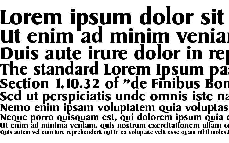 образцы шрифта SydneySerial Bold, образец шрифта SydneySerial Bold, пример написания шрифта SydneySerial Bold, просмотр шрифта SydneySerial Bold, предосмотр шрифта SydneySerial Bold, шрифт SydneySerial Bold