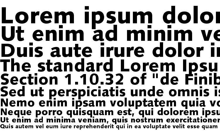 specimens SyntaxLTStd Black font, sample SyntaxLTStd Black font, an example of writing SyntaxLTStd Black font, review SyntaxLTStd Black font, preview SyntaxLTStd Black font, SyntaxLTStd Black font