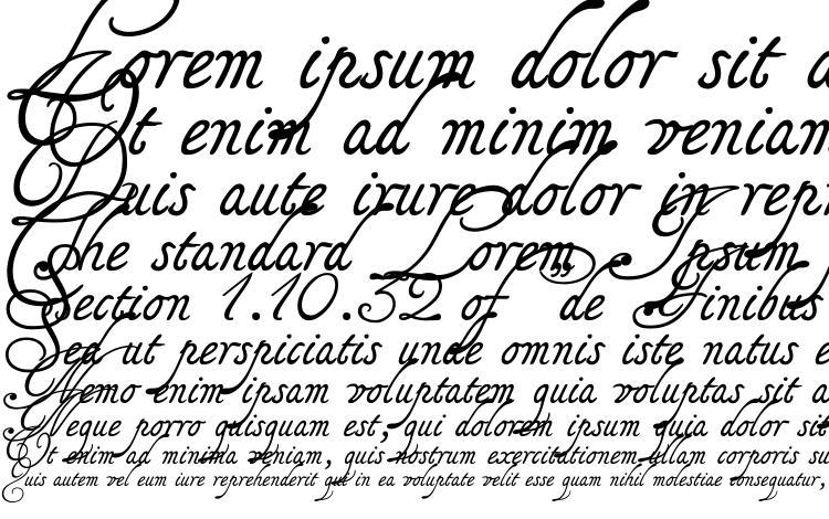 specimens Tagettes font, sample Tagettes font, an example of writing Tagettes font, review Tagettes font, preview Tagettes font, Tagettes font