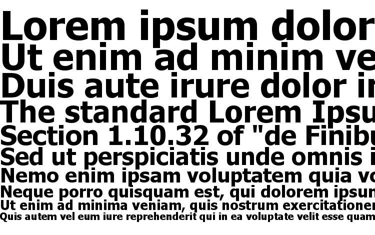 specimens Tahoma KOI8 Bold font, sample Tahoma KOI8 Bold font, an example of writing Tahoma KOI8 Bold font, review Tahoma KOI8 Bold font, preview Tahoma KOI8 Bold font, Tahoma KOI8 Bold font