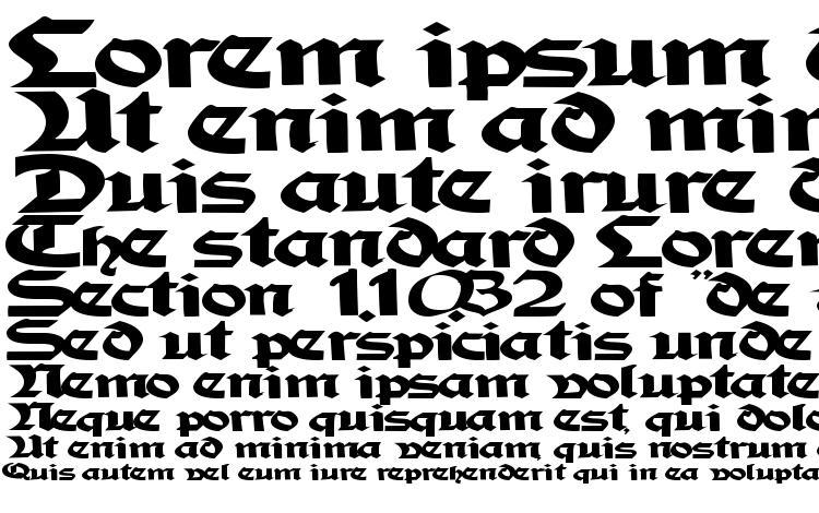 specimens Tampicossk bold font, sample Tampicossk bold font, an example of writing Tampicossk bold font, review Tampicossk bold font, preview Tampicossk bold font, Tampicossk bold font