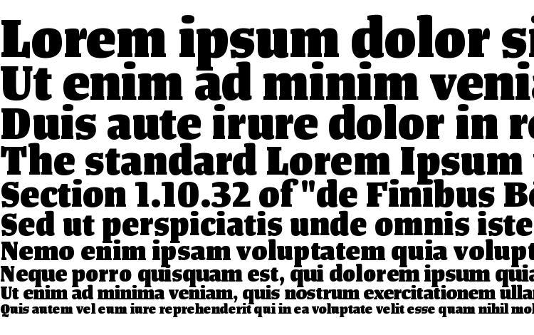 specimens TangerSerifNarrow Heavy font, sample TangerSerifNarrow Heavy font, an example of writing TangerSerifNarrow Heavy font, review TangerSerifNarrow Heavy font, preview TangerSerifNarrow Heavy font, TangerSerifNarrow Heavy font