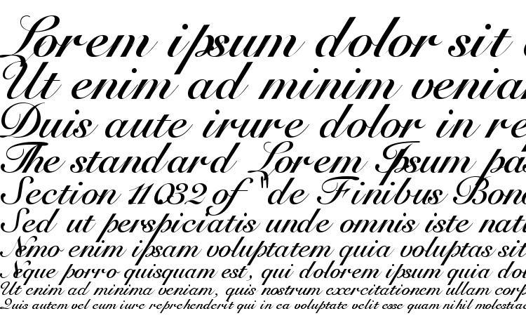 specimens Tangoscriptssk bold font, sample Tangoscriptssk bold font, an example of writing Tangoscriptssk bold font, review Tangoscriptssk bold font, preview Tangoscriptssk bold font, Tangoscriptssk bold font