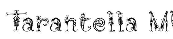 Tarantella MF font, free Tarantella MF font, preview Tarantella MF font