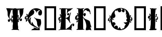 шрифт Tchekhonin1, бесплатный шрифт Tchekhonin1, предварительный просмотр шрифта Tchekhonin1