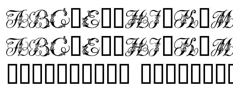 глифы шрифта Tchekhonin2, символы шрифта Tchekhonin2, символьная карта шрифта Tchekhonin2, предварительный просмотр шрифта Tchekhonin2, алфавит шрифта Tchekhonin2, шрифт Tchekhonin2