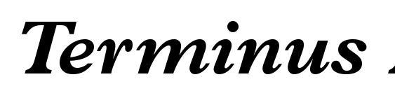 Terminus Black SSi Bold Italic Font