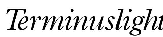 шрифт Terminuslightssk italic, бесплатный шрифт Terminuslightssk italic, предварительный просмотр шрифта Terminuslightssk italic