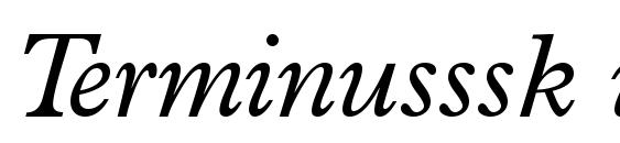 Terminusssk italic Font
