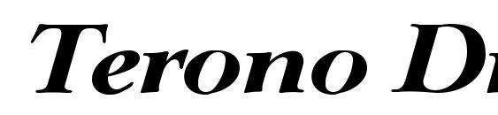 шрифт Terono Display SSi Italic, бесплатный шрифт Terono Display SSi Italic, предварительный просмотр шрифта Terono Display SSi Italic
