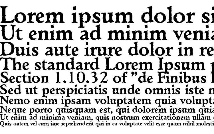 specimens Ticonderoga Regular DB font, sample Ticonderoga Regular DB font, an example of writing Ticonderoga Regular DB font, review Ticonderoga Regular DB font, preview Ticonderoga Regular DB font, Ticonderoga Regular DB font