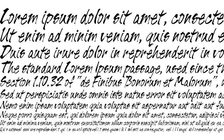 specimens Tiger Rag LET Plain.1.0 font, sample Tiger Rag LET Plain.1.0 font, an example of writing Tiger Rag LET Plain.1.0 font, review Tiger Rag LET Plain.1.0 font, preview Tiger Rag LET Plain.1.0 font, Tiger Rag LET Plain.1.0 font