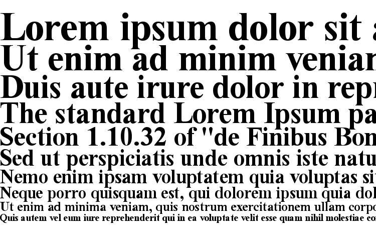 образцы шрифта Time Roman Bold, образец шрифта Time Roman Bold, пример написания шрифта Time Roman Bold, просмотр шрифта Time Roman Bold, предосмотр шрифта Time Roman Bold, шрифт Time Roman Bold