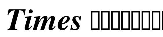 Times Полужирный Курсив Font