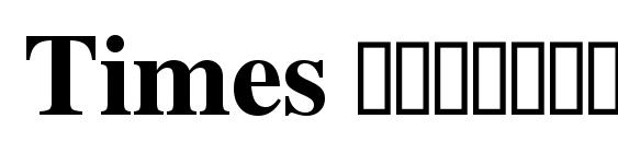 Шрифт Times полужирный