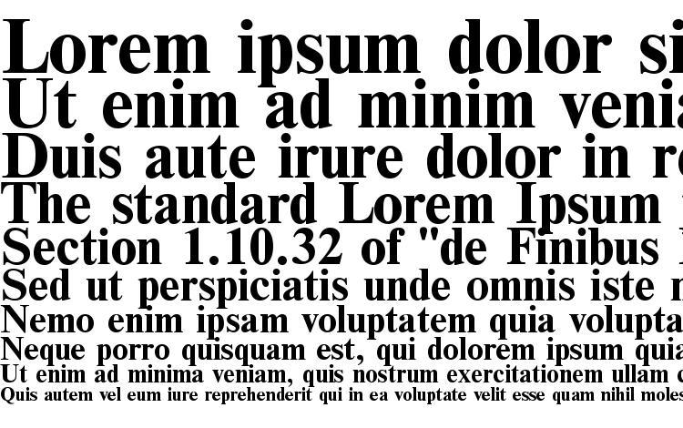 образцы шрифта Times Bold, образец шрифта Times Bold, пример написания шрифта Times Bold, просмотр шрифта Times Bold, предосмотр шрифта Times Bold, шрифт Times Bold