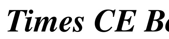 Times CE Bold Italic Font