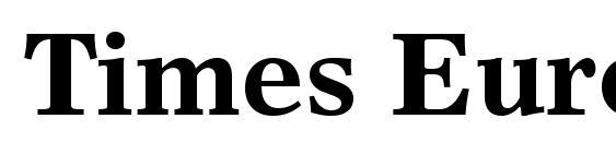 Times Europa LT Bold Font