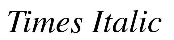 Times Italic Font