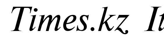 Times.kz Italic Font