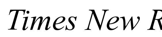 Шрифт Times New Rom I