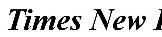 Times New Roman Полужирный Курсив Font