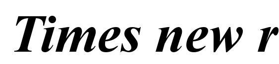 Times new roman bold italic Font