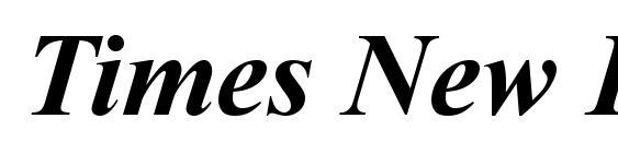 Times New Roman CE Bold Italic font, free Times New Roman CE Bold Italic font, preview Times New Roman CE Bold Italic font
