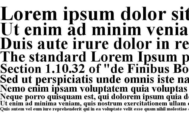 образцы шрифта Times New Roman CE Bold, образец шрифта Times New Roman CE Bold, пример написания шрифта Times New Roman CE Bold, просмотр шрифта Times New Roman CE Bold, предосмотр шрифта Times New Roman CE Bold, шрифт Times New Roman CE Bold