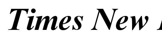 Times New Roman Cyr Bold Italic Font