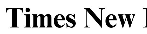 Times New Roman Cyr Bold Font
