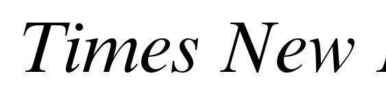 Times New Roman Cyr Italic Font