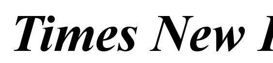 Шрифт Times New Roman KOI8 Bold Italic