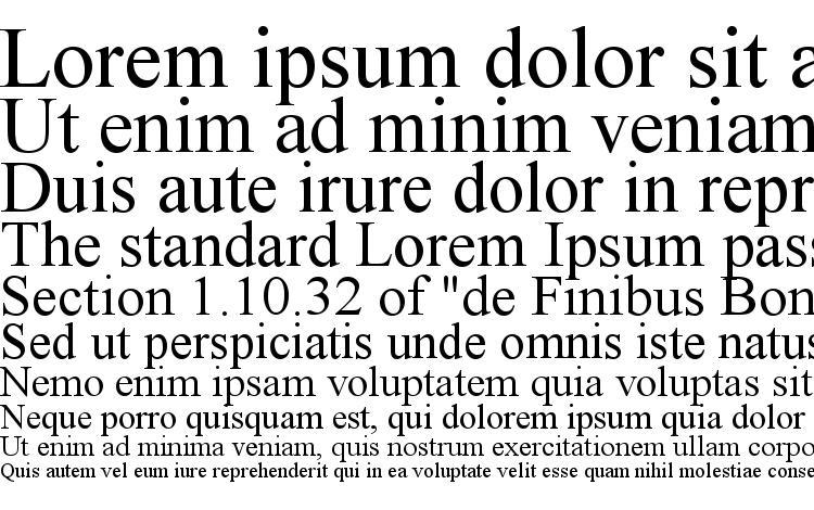 образцы шрифта Times New Roman, образец шрифта Times New Roman, пример написания шрифта Times New Roman, просмотр шрифта Times New Roman, предосмотр шрифта Times New Roman, шрифт Times New Roman