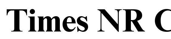Times NR Cyr MT Bold Font
