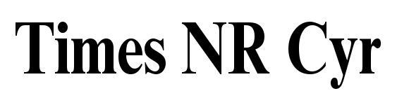 Times NR Cyr MT Bold80b Font