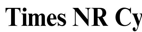 Times NR Cyr MT Bold90b Font