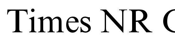 Times NR Cyr MT Font