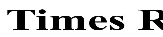 Times Roman Ex Bold Font