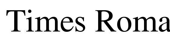 Times Roman Font