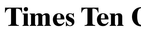 Times Ten Cyrillic Bold Font