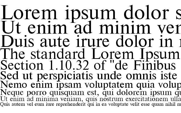 specimens Times font, sample Times font, an example of writing Times font, review Times font, preview Times font, Times font