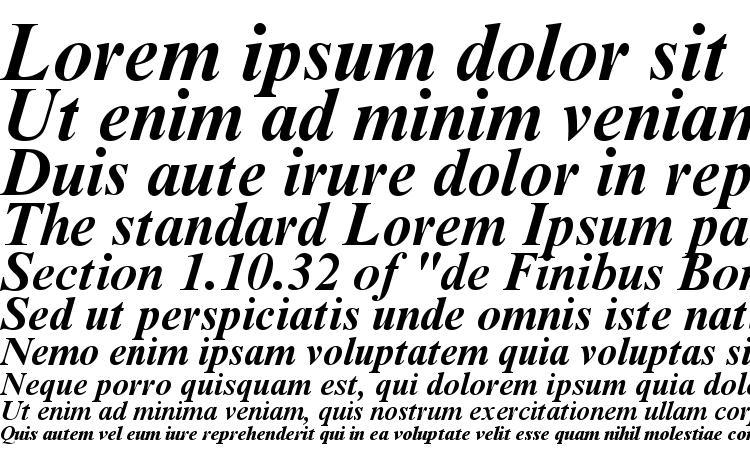 образцы шрифта Timesbi2, образец шрифта Timesbi2, пример написания шрифта Timesbi2, просмотр шрифта Timesbi2, предосмотр шрифта Timesbi2, шрифт Timesbi2