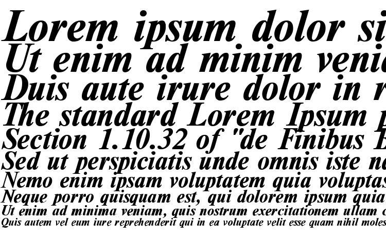 specimens TimesDL Bold Italic font, sample TimesDL Bold Italic font, an example of writing TimesDL Bold Italic font, review TimesDL Bold Italic font, preview TimesDL Bold Italic font, TimesDL Bold Italic font