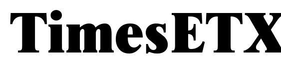 TimesETX Rus Font