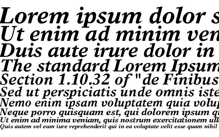 specimens TimesEuropaLTStd BoldItalic font, sample TimesEuropaLTStd BoldItalic font, an example of writing TimesEuropaLTStd BoldItalic font, review TimesEuropaLTStd BoldItalic font, preview TimesEuropaLTStd BoldItalic font, TimesEuropaLTStd BoldItalic font